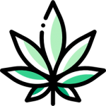 itsHemp_logo_leaf