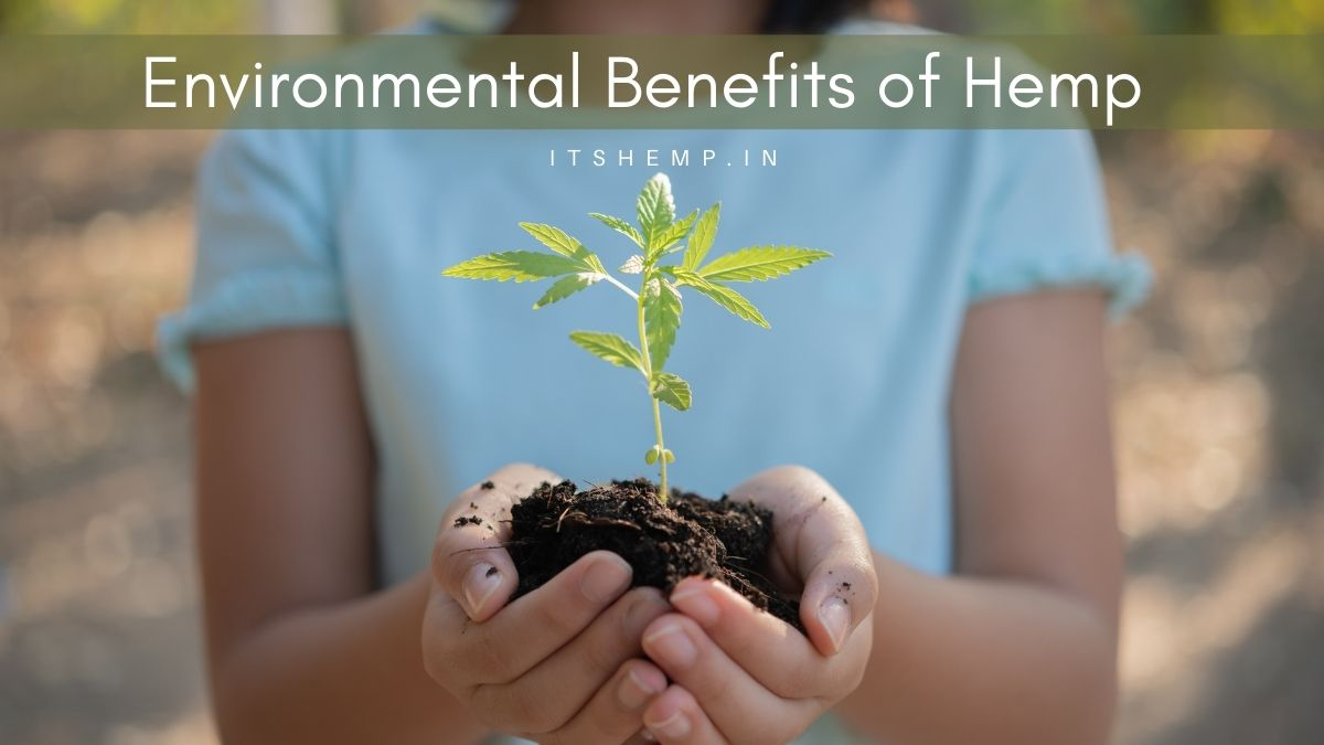 Environmental Benefits of Hemp