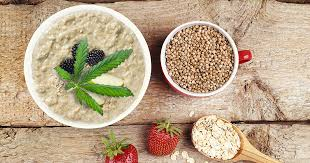 Hemp Powder Porridge or Hemp Dalia Recipe on Its Hemp