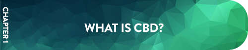 Chapter 1 What is CBD