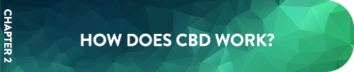 Chapter 2 How CBD Works